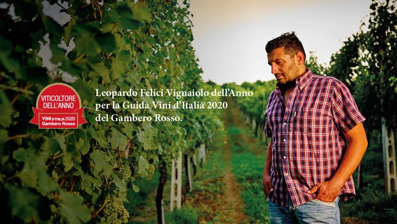 Andrea Felici | Azienda Agricola Biologica | Verdicchio | Vini dei Castelli  di Jesi | Apiro – Marche - Italia